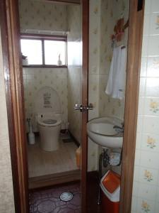 0.5坪に詰め込まれた大便器と手洗器