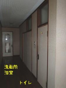 廊下からの洗面所とトイレの入り口ドアに段差がある