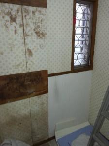 洗面所の化粧台を外すと裏にはカビがびっしりと