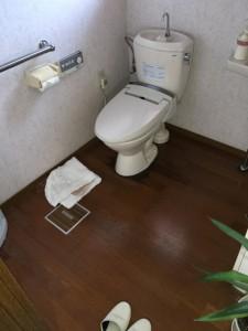 トイレの前面に尿染みがあってマットを敷いていました