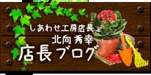 青森県八戸市リフォームしあわせ工房 店長ブログ
