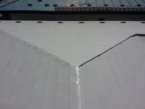 棟板金からの雨漏りが原因でした